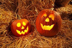 pumpkins-carved-04